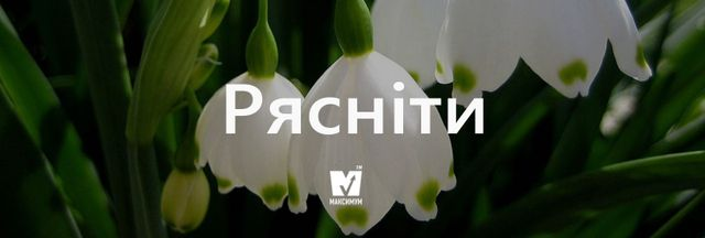 """Говори красиво: 10 """"весняних"""" українських слів, які вас надихнуть - фото 154891"""
