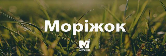 Говори красиво: 10 українських слів, які збагатять вашу мову - фото 162241