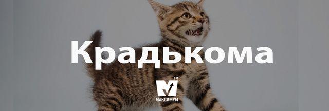 Говори красиво: 10 українських слів, які збагатять вашу мову - фото 162236