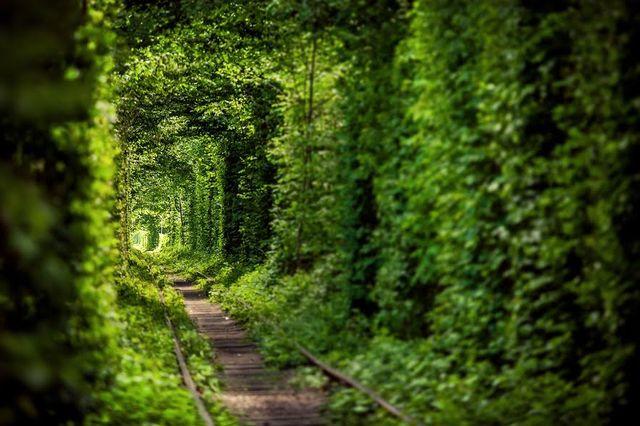 Тунель кохання - фото 172481
