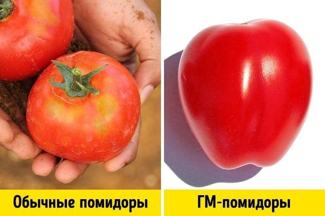Три прості способи відрізнити ГМО від звичайних продуктів - фото 184213