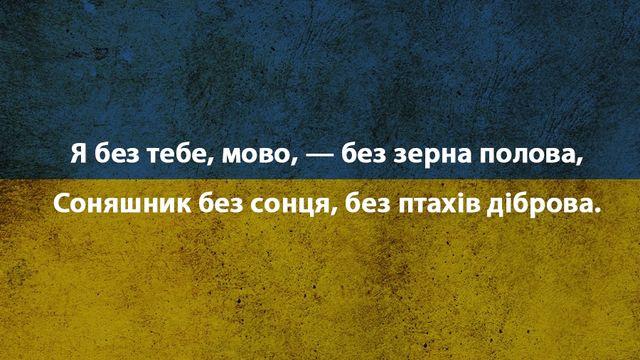 Красиві слова про українську мову - фото 228926