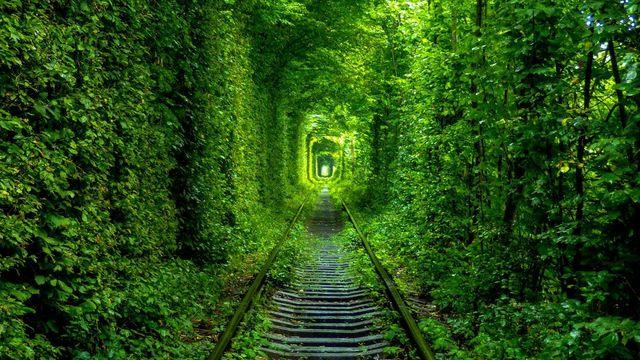 Тунель кохання - фото 243098
