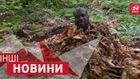 ДРУГИЕ новости. Шакила О'Нила закопали среди листьев. Как велосипед заменил музыкальный оркестр