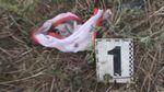 У поліції розповіли, як убивали малолітню дівчинку на Одещині