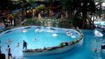 Стало відомо, наскільки небезпечною була вода у харківському аквапарку