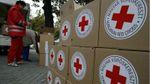 Червоний Хрест передав допомогу на окупований Донбас