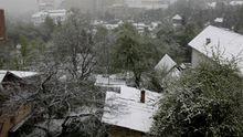Аномальна весна: на Львівщині випав сніг