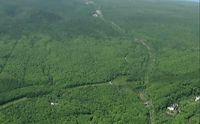 Наказание по-японски: родители оставили непослушного сына в лесу