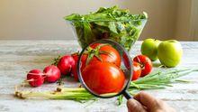 Вчені зробили гучну заяву про ГМО