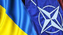 Сколько украинцев желают вступления в НАТО: результаты, которые поражают
