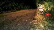 Жахлива ДТП на Київщині: водій збив трьох дітей і втік