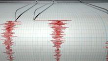 Думав це глюки, – у мережі активно відреагували на землетрус