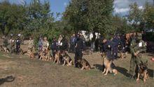 Как соревнуются боевые овчарки, стоящие  на защите Украины
