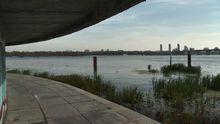 Річка, з якої п'ють воду більшість українців, на межі екологічної кататсрофи, – екологи