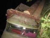 На Закарпатті перекинулося авто з краденим лісом, є загиблі
