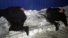 Детали задержания банды, из-за которой произошла перестрелка в Княжичах: появились фото и видео