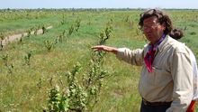 На Одещині обстріляли двір французького винороба