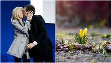 Главные новости 24 апреля: результаты выборов во Франции, в Украину возвращается весна