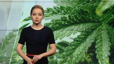 Випуск новин за 18:00: Підсумками комісії Україна-НАТО. Єпископа покарали за гучну гулянку