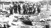 """Волинська трагедія: історики розповіли, як """"розмінувати"""" українсько-польські відносини"""