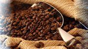 Самая кофейная страна мира впервые будет покупать кофе за границей