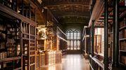 Там живет сказка: 7 самых красивых библиотек мира