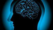 Человеческий мозг может производить ядовитое вещество для организма, – ученые