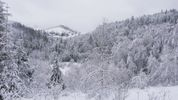 Весна дивує. Частину України засипало снігом