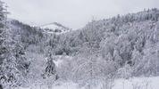 Зима весной. Часть Украины засыпало снегом