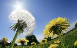 Прогноз погоды на 23 мая: Украину окутает летнее тепло и весенние дожди