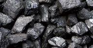 В Украину прибыл африканский уголь