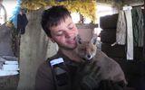 """Вместе с бойцами АТО на передовой """"воюет"""" необычное животное"""