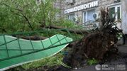 Страшный ураган в Москве убил уже 16 человек