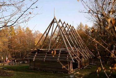 Мандрівка Україною. Шевченківський гай – місце, що постало завдяки недбальству