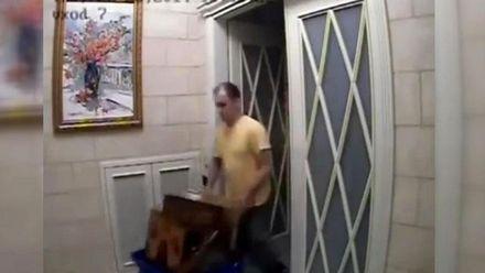 Хроніка Євромайдану: Майдан прощається з загиблими, Янукович тікає з Межигір'я