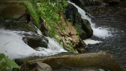 Мертвое озеро – мистическая история таинственного водоема