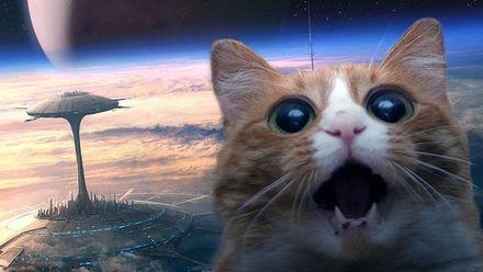 Кого відправити досліджувати нові планети? Цікаве опитування