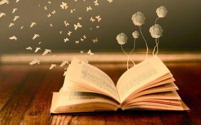 Як читання книг впливає на людину: цікаве дослідження