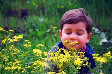 ТОП запахів, які чудово піднімають настрій