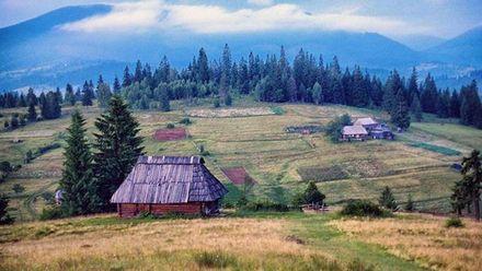 Ученые рассказали, как отдых в деревне влияет на эмоциональное здоровье