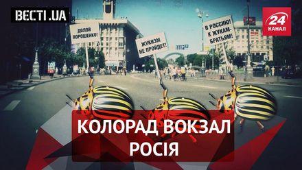 """Вести.UA. """"Жукизм"""" не пройдет. Красота (не) спасёт """"Радикальная партия"""""""