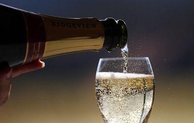 Вчені назвали серйозну небезпеку, яку спричиняє помірне споживання алкоголю
