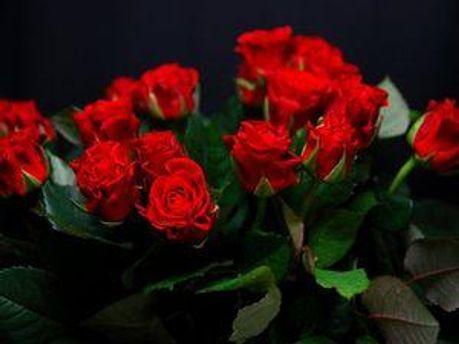 Президент не остановился, но оставил цветы