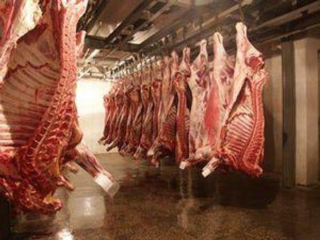З Держрезерву вкрали м'яса на 10 мільйонів