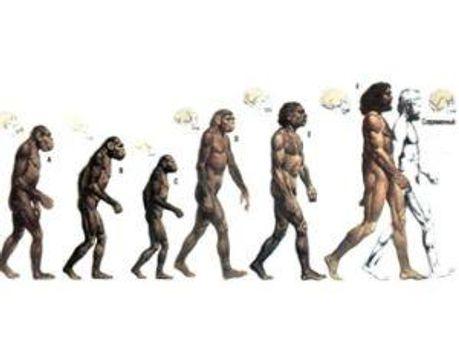 Люди эволюционируют медленнее