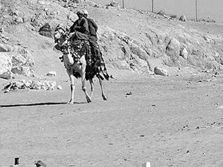 Бедуины в Египте