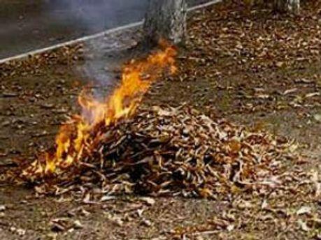 Сжигание листьев стало причиной смерти пенсионера