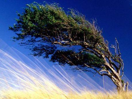 Можливі шквали вітру