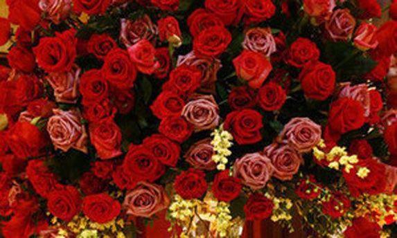Фото цветов с приветствия на сайте Партии регионов